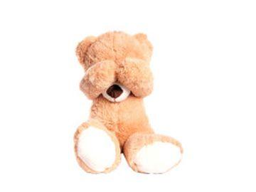 Sie sehen ein Bild von einem Teddy